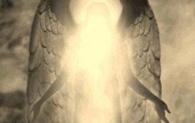 angelo-di-luce-oro-380x240