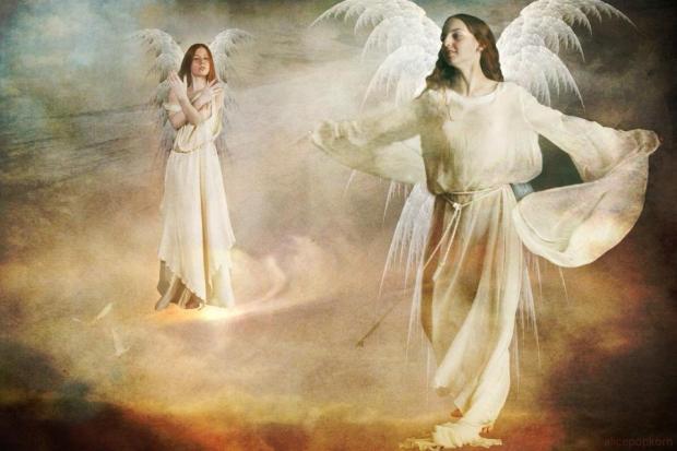 angeli e scelte