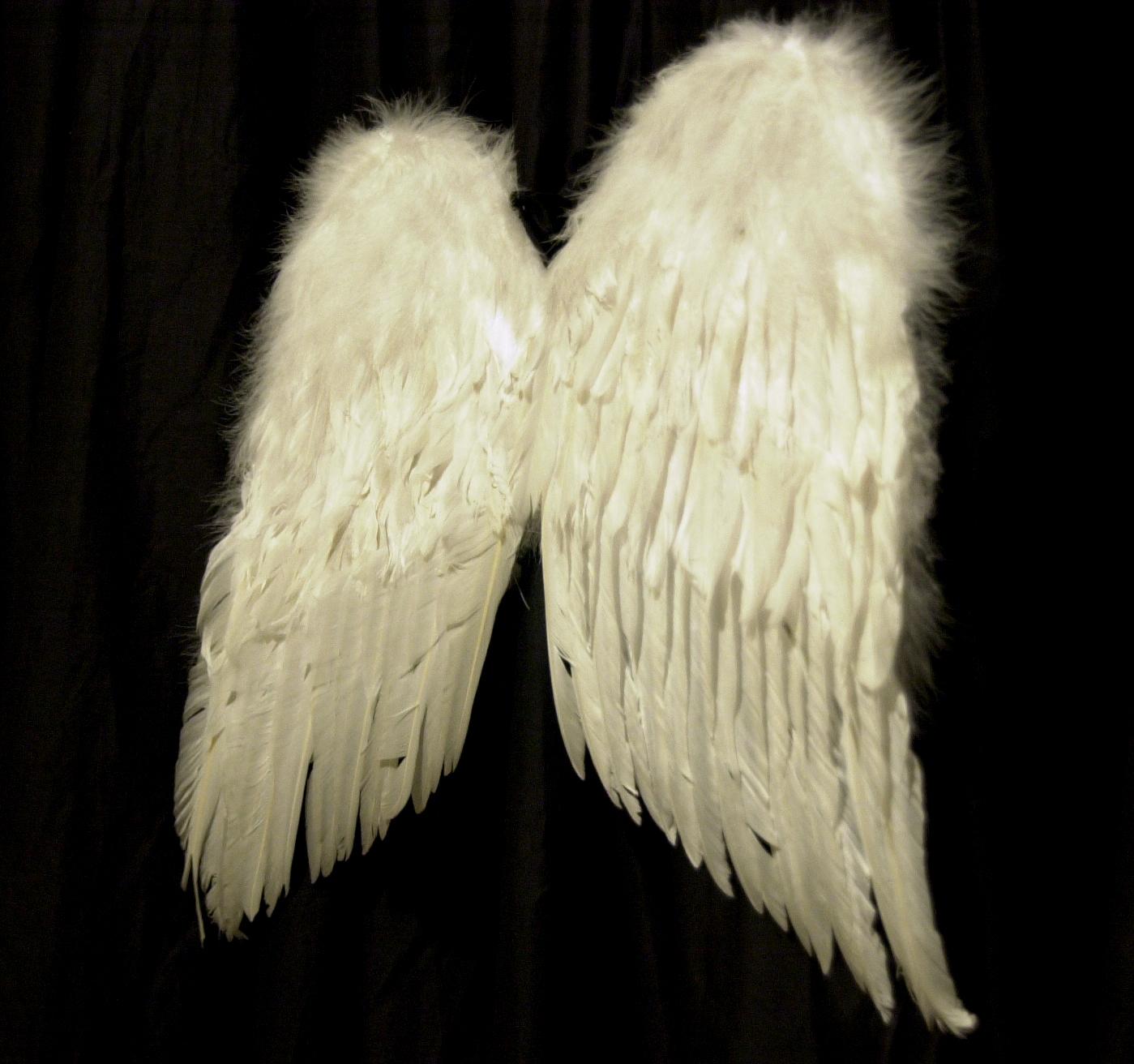 ali angelo.jpg