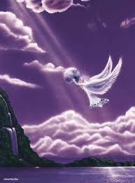 angeli di luce 3