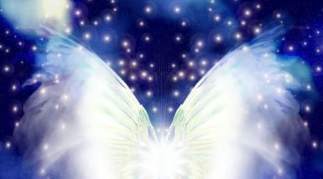 angelo turchese.jpg