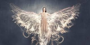 angelo 3